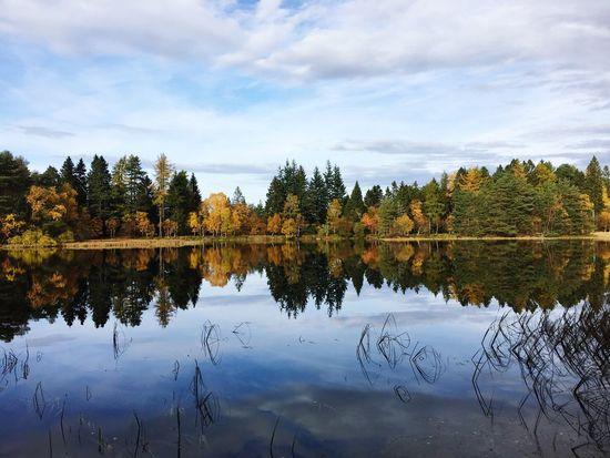 Beauty In Nature Queen's Loch Aboyne