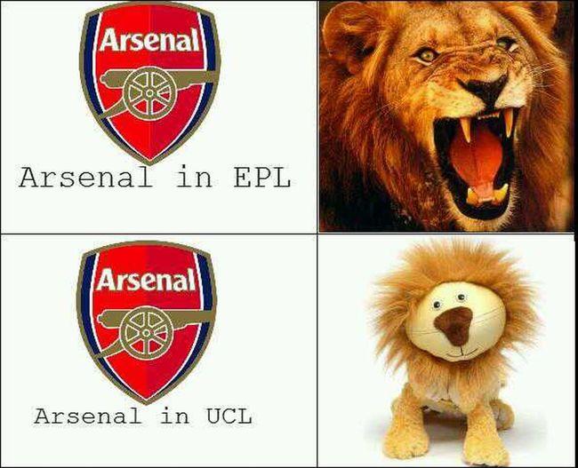 Hahah lol :-D Congratulations Dortmund Championsleague