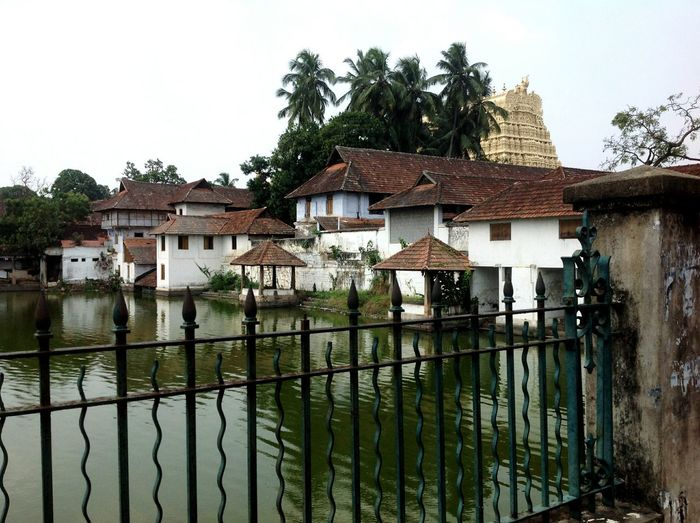 Padmanabhaswamy Temple the richest hindu temple in the world with tonnes of gold and jewels lying in the underground vaults,but they won't open it due to some kind of curse.. Temple EyeEm Best Shots Eye Em Travel Check This Out Eye4photography  EyeEmBestPics India Kerala GodsOwnCountry Original Experiences Caress Your Soul Miles Away The Great Outdoors - 2017 EyeEm Awards The Architect - 2017 EyeEm Awards