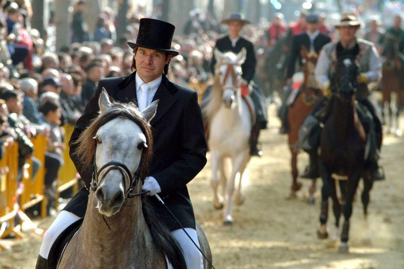 Horse Horse Photography  Photooftheday Trestombs