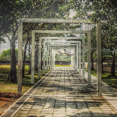 大埔  香港  海濱公園 TaiPo HongKong Park