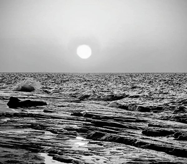 North coast, Alexandria, Egypt Sea Water Astronomy UnderSea Moon Swimming Astrology Sign Wave Sky Horizon Over Water Calm Coast Aquatic Mammal Sun Silhouette Dramatic Sky Sea Life Seascape Sky Only Floating In Water
