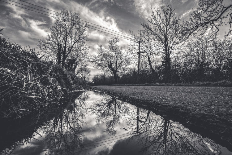 Lines Noir Et Blanc Reflection Bare Tree Beauty In Nature Blackandwhite Bnw_collection Branch Cloud - Sky Day Grass Lake Landscape Nature No People Outdoors Scenics Sky Tranquil Scene Tranquility Tree Water