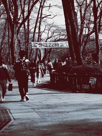 Real People Walking Inokashira Inokashira Park Park Kichijoji Tokyo Tokyo,Japan Japan Japan Photography Tokyo Street Photography Holiday People Olympus OM-D E-M5 Mk.II Monochrome Monochrome Photography Brack And White
