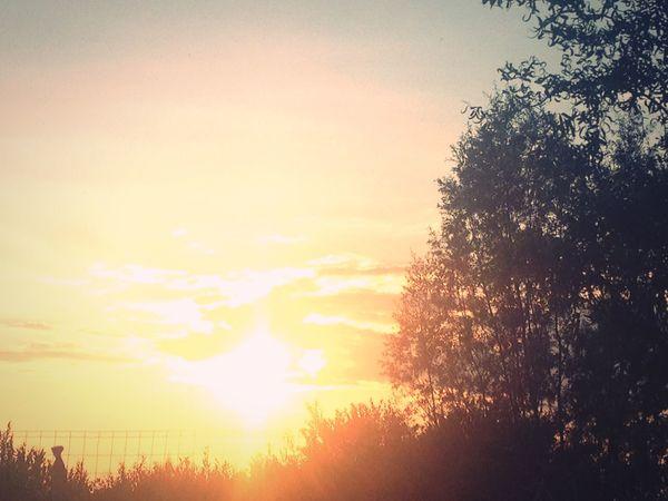 Sun ☀️