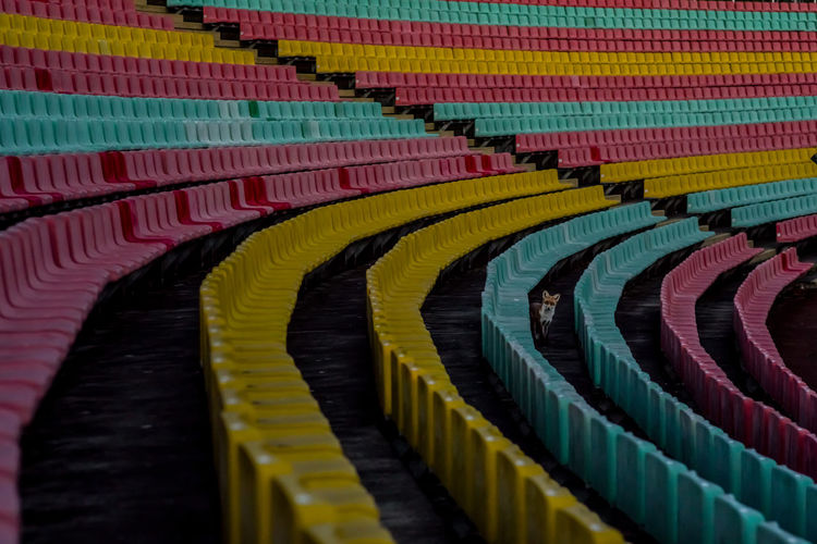 High angle view of multi colored pencils in stadium