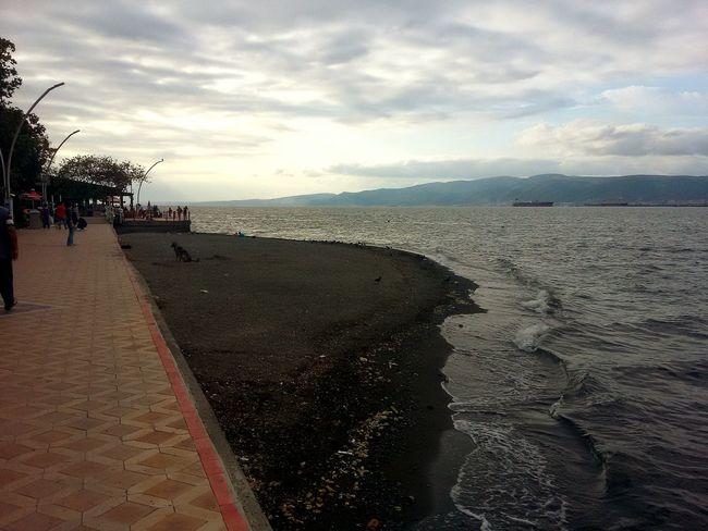 Turkey Degirmendere Sea And Sky Seaside Sea_collection