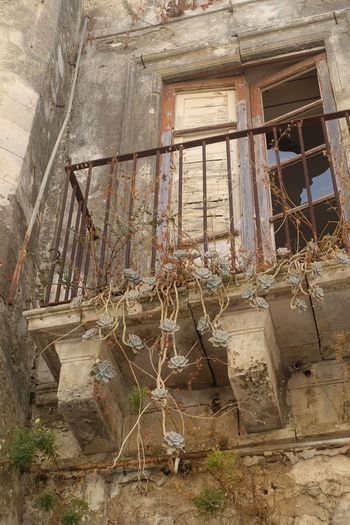 Architecture Balcony Balcony Garden Forgotten Forgotten Places  Lostplaces Morbid Fragility Summer Palermo❤️ Sicily Urban Morbidity