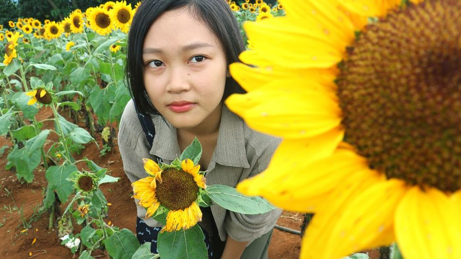 Flower Yellow Sunflower Portrait People Headshot Outdoors Day Beauty Beauty In Nature Close-up Lifestyle Photography Lifestyle Streetphotography Photos Around You Cultures Life