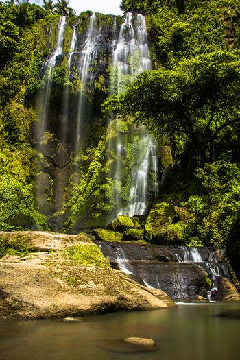 Hulugan Falls Falls Rock Formation HuluganFalls Huluganfallsadventure No People Splashing Stream - Flowing Water Power In Nature Outdoors Rainforest Environment Nature Motion Luisianalaguna