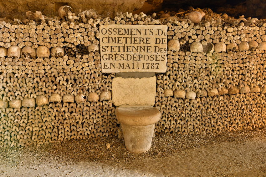 Bones Darkness Paris Paris, France  Sightseeing Under The Earth Agriculture Catacombes Catacombs Close-up Day Food Food And Drink Freshness Healthy Eating Katakomben No People Outdoors Scary Scary Places Skull Skulls Skulls And Bones Spot Text