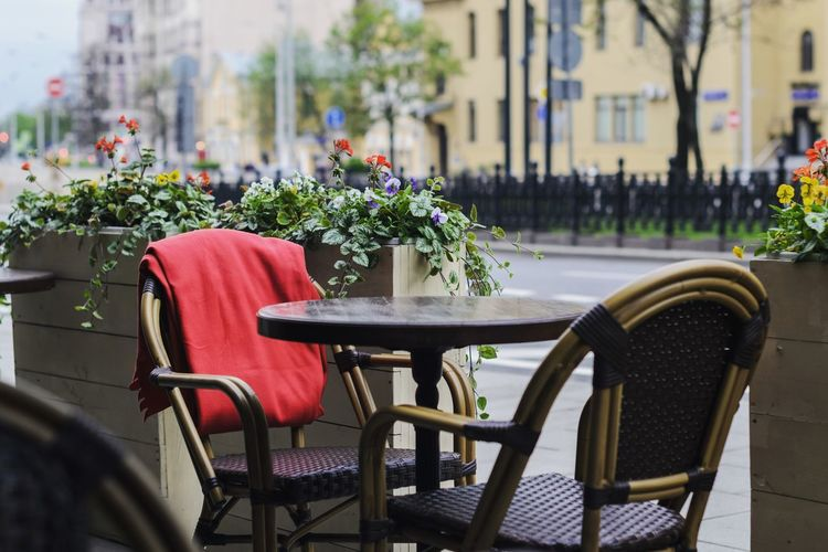 Flower Moscow Outdoors Red Color City City Life Lifestyle Eating Outdoors EyeEm Selects City Cafe Seat Chair Table Sidewalk Cafe Furniture Close-up Building Exterior City Street Outdoor Chair Pedestrian Foldable Outdoor Cafe Flower Head In Bloom