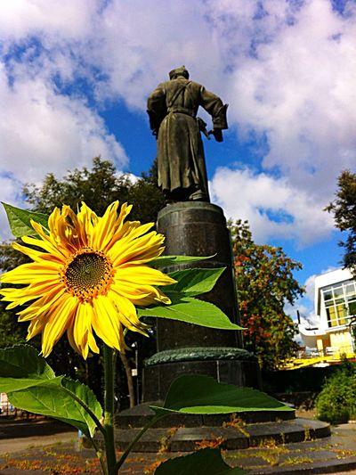 Nature Enjoying Life Иваново Ivanovo подсолнух памятник Monuments