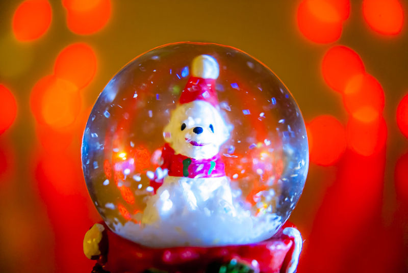 A little cute white bear in a snow chisrtmas globe Christmas Christmas Decoration Christmas Hat Christmas Lighting Christmas Lights Christmas Snow Globe Cold Cute Decoration Gifts Happiness Happy Indoors  Little Bear Ornamental Smiling Face Snow Flakes Snow Globe Sonyalpha Sphere Still Life StillLifePhotography Warm Colors Whishes Wintertime
