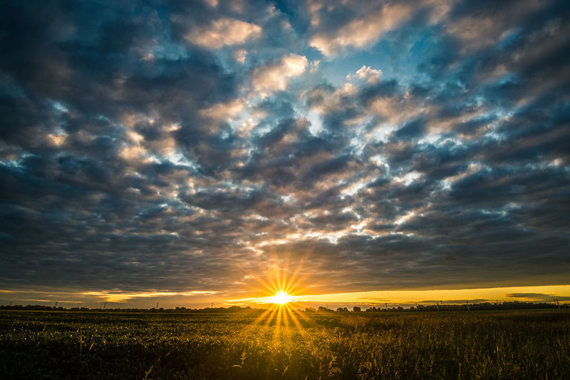 On my way to work, had to stop and shoot this picture. Sunrise Landscape Sun Sky Beauty In Nature Field Sunbeam Tranquil Scene Rural Scene Dramatic Sky Cloud Nature Scenics Tranquility Cloud - Sky Cloudscape Horizon Outdoors Wideangle