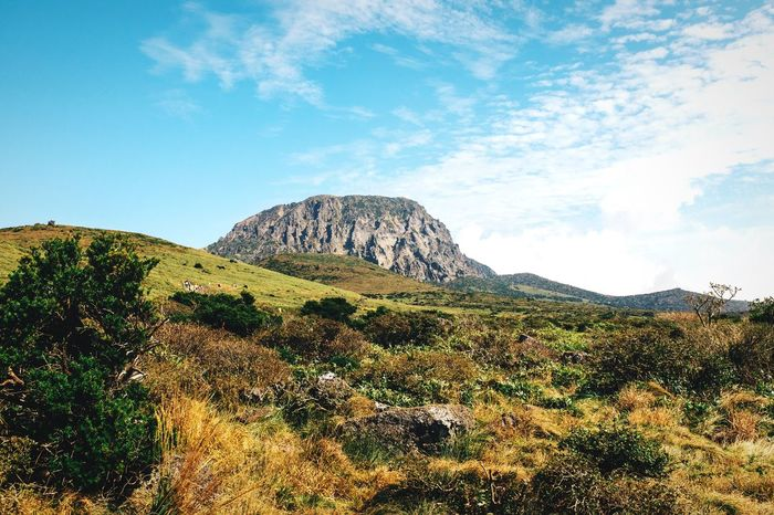 Volcanic landscape Mountain Beauty In Nature Nature Scenics Landscape Tranquility Non-urban Scene Outdoors No People Grass Travel Destinations Volcano Volcanic Landscape JEJU ISLAND  Hallasan Mountain Range Trekking Climbing Mountains Korea Mountain Road Volcanoes Volcano Crater Green Color Peak