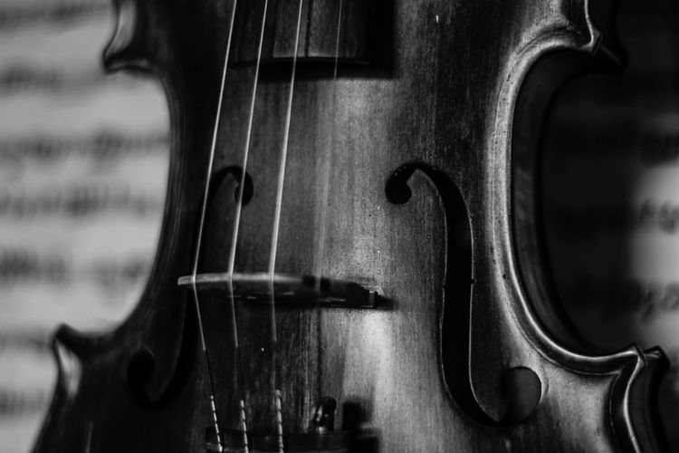 Violin Arts Culture And Entertainment Black & White Black And White Black And White Violin Blackandwhite Blackandwhite Photography Close-up Indoors  Music Musical Equipment Musical Instrument Musical Instrument String No People Violin Violin Strings Violin Wallpaper Woodwind Instrument