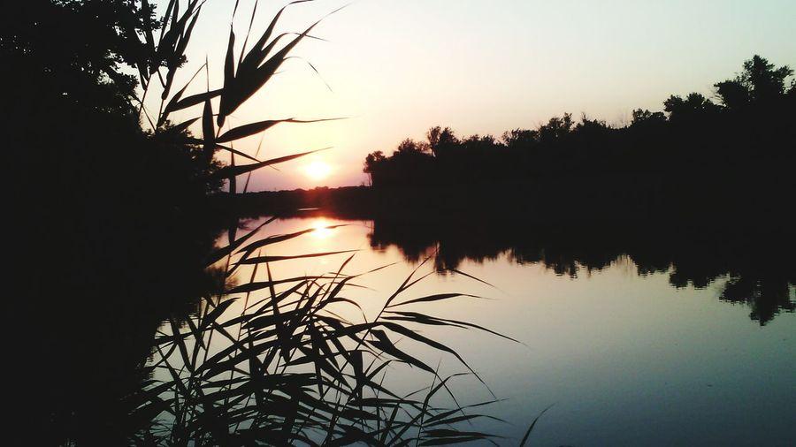 Рыбалка)) Relaxing