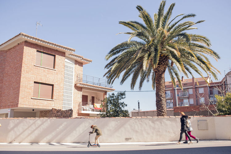 Architecture Building Exterior Built Structure Clear Sky Day Full Length Men One Person Outdoors Palm Tree People Real People Rear View Sky Sunlight Tree Walking