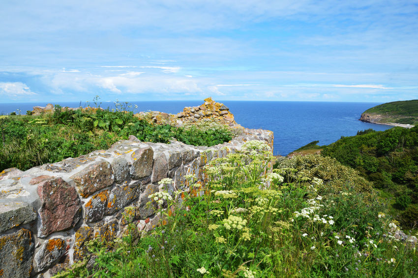 Bornholm Denmark Architecture Beauty In Nature Cloud - Sky Day Growth Hammershus Scandinaviancastle Ruins Bornholm Denmark Horizon Horizon Over Water Land Landscape Nature No People Non-urban Scene Outdoors Plant Scenics - Nature Sea Sky Tranquil Scene Tranquility Tree Water