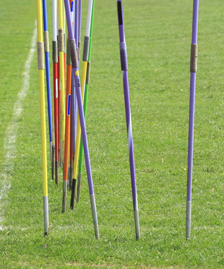 Javelins stuck in the ground during a training session. Arrow Green Objects Athletism Background Competition Grass Green Color Javelins Large Group Of Objects Sport Sport Objects Sports Variation