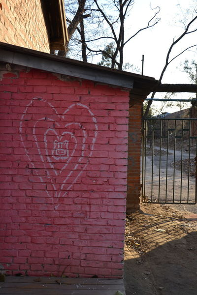 Love Pig Face Street Art/Graffiti Architecture Building Exterior Built Structure Close-up Day No People Outdoors Red Sky Street Art Tree