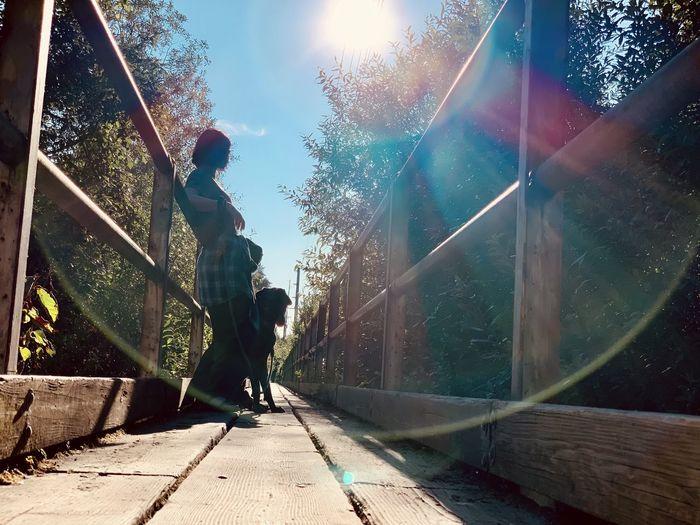 Man walking by railing against bright sun