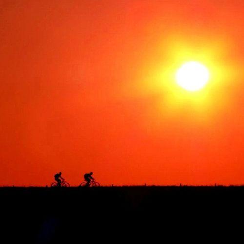 #sunset #bicycle #bike #nieuwvliet #sun #orange #dike #dyke #bank #beach Dyke  Instago Beach Jj  Sun Dike Sunset Instagood Bike Instagramhub Bicycle Webstagram Orange Instadaily Bank Pictureoftheday Popular Popularpage Photooftheday Nieuwvliet Instagram Picoftheday Instamood Bestoftheday IGDaily