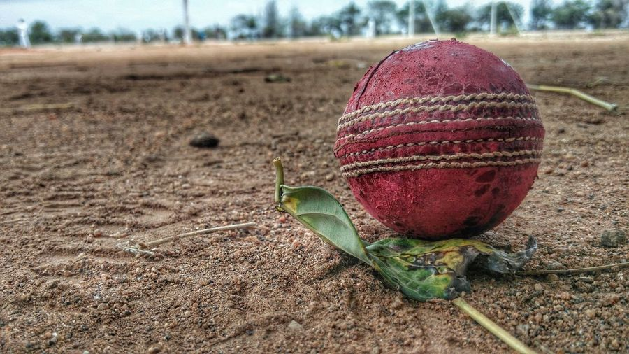 Focus On Foreground Sand Weathered Dirt Close-up Summer Field Outdoors Vacations Green Color Non-urban Scene Messy Dirty No People Agriculture Tranquility Cricket Field Weathered Cricket Ball Cricket Pitch
