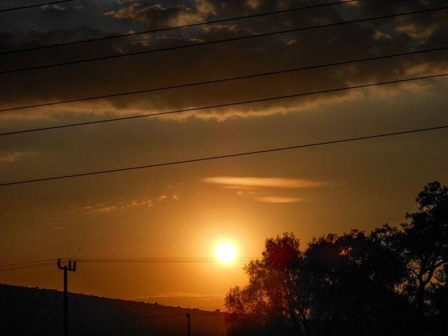 sunset Tree Sunset Silhouette Sun Orange Color Sky Electricity Pylon Power Line  Cable