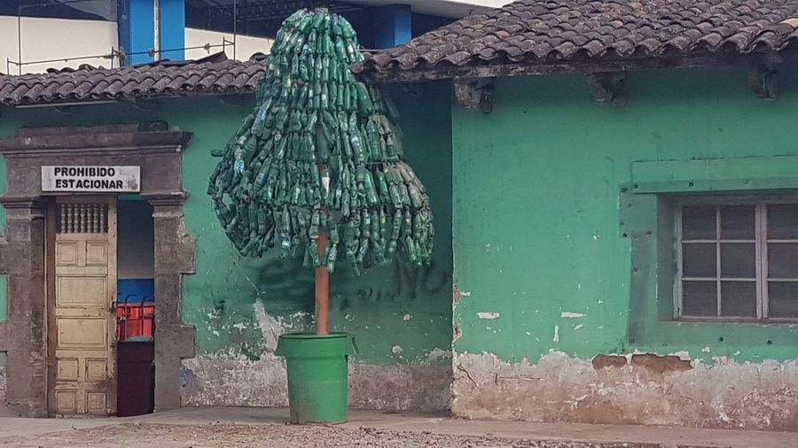 Architecture Built Structure Building Exterior Green Color No People Building Day Window Nature Wall - Building Feature City Plant Hanging Decoration Communication Turquoise Colored House Roof Old Outdoors