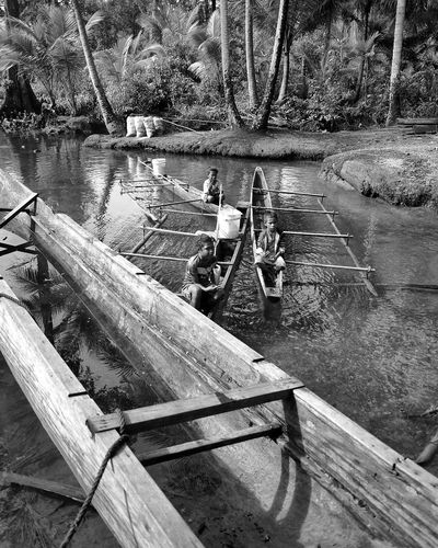 Biak Bay at Kunef Wood - Material Water High Angle View No People Day Outdoors Nature