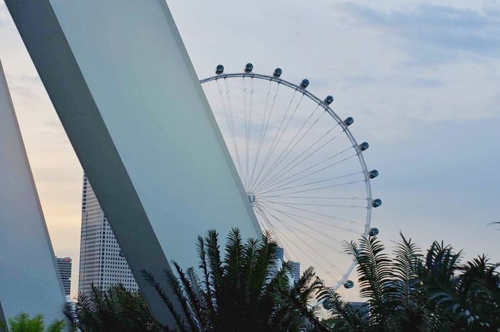 The Week On EyeEm Low Angle View Ferris Wheel Sky Day Outdoors Tree Amusement Park Big Wheel Built Structure No People Architecture