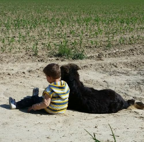 Childhood Boy And Dog Friends Friendship Animal Themes Pets Dog Dog Love Man And Dog EyeEm Selects Let's Go. Together.