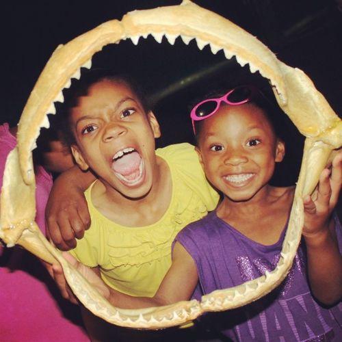 When sharks attack! Sharkteeth Mycrazykids Loveemtho