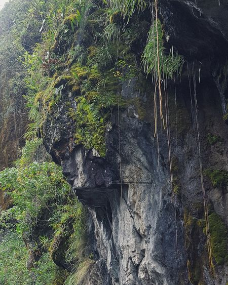 Locals from Baños, Ecuador say it's Jesus's face. Day Nature Close-up Water Outdoors Textured  Vacations Green Color Plants And Flowers Amateurphotography Mountain Rocks And Water Rocks Faces In Places Face Ecuador