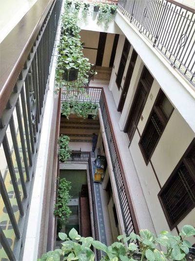 Architecture Balcony Building Exterior Built Structure Day Growth House Nature No People Outdoors Plant Potted Plant Railing Window Window Box