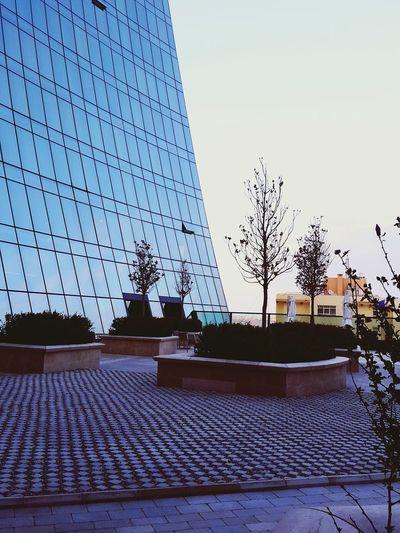 Different angle Baku Azerbaijan Azerbaijanphptography City Caucasus Caucasian Flametowers AlovQüllələri Angle Building Glasshouse Sky Terrace Cloudy Day