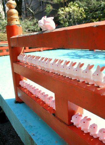 岡崎神社 Japan Kyoto 京都 Trip Shrine おみくじ 兎 神社 東天王