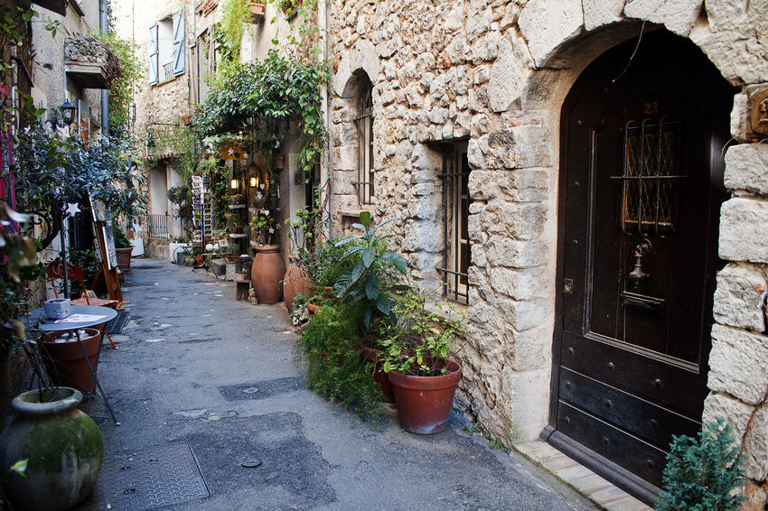 Architecture Building Exterior Built Structure Day Door Exterior Flower Pot Front Or Back Yard Growth Historic House Leaf Mougins Narrow Old Plant Potted Plant Ruined Street Wall Window