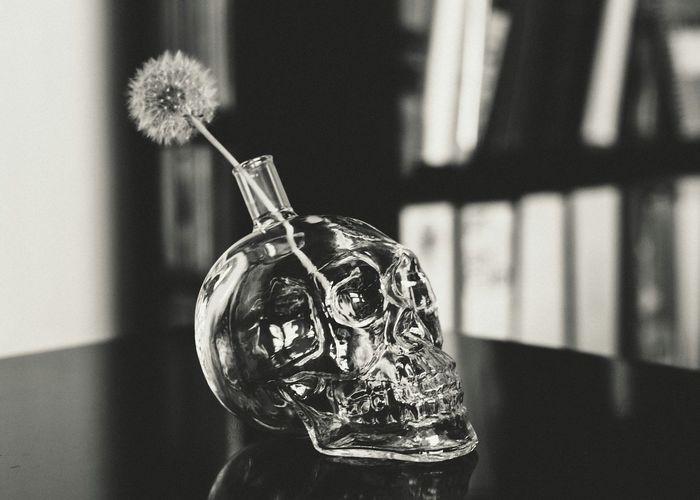 Check This Out Blackandwhite Black&white Taking Photos Still Life StillLifePhotography Glass Skull Dandelion