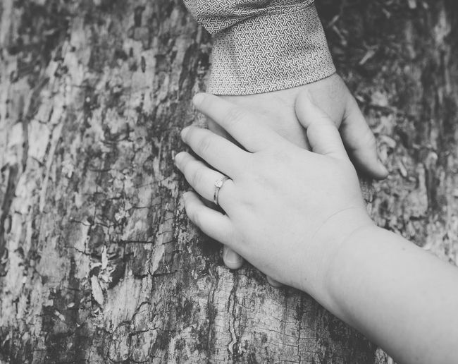 Close-up of hands against tree trunk