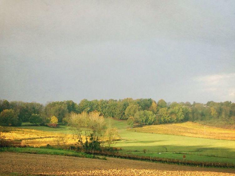 Automne Lot Et Garonne Autumn colors