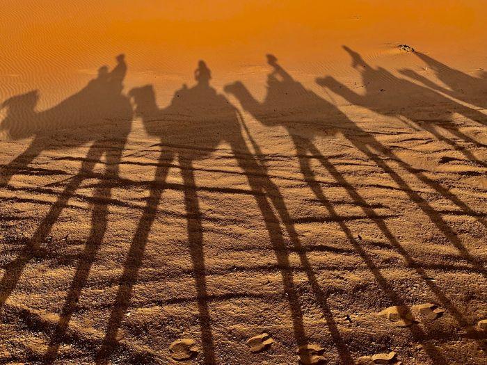 Shadow of people on sand dune