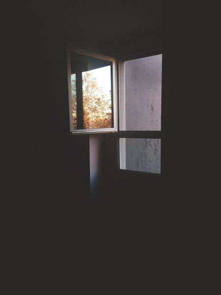 Window Autumn Autumn Colors Vscocam Hello World Canon Blackandwhite Art Colors Check This Out