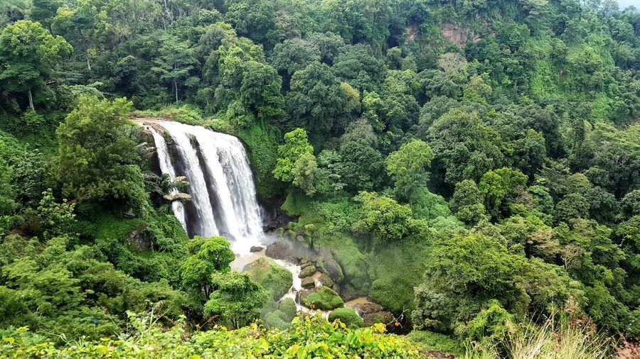 Nature Green Color Growth Beauty In Nature No People Outdoors Tree Day Water Close-up Freshness Indonesia_photography Vacations Traveling Time Waterfall Beauty In Nature Scenics Freshness Landscape Travel Destinations Green Color
