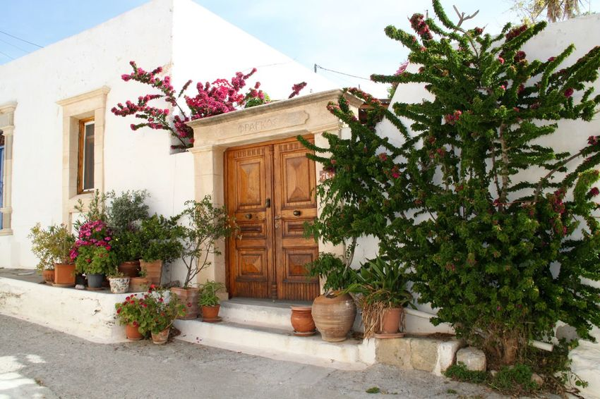 Architecture Building Exterior Built Structure Door Entrance Façade Greece House Lachania No People Outdoors Plant Potted Plant Residential Building Residential District Rhodes Ródos Architecture Building Entrance