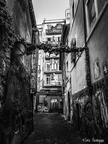 Treasure in Rome Architecture Built Structure Building Exterior No People Outdoors Francesco Totti Shadows And Backlighting Blackandwhite Photography Black And White Photography Bianco E Nero Monochrome Monochrome Photography EyeEm Bnw Greyscale Black & White Shadows & Lights Black And White Blackandwhite