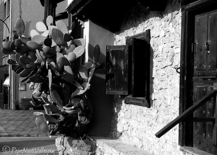 Blackandwhite Photography Streetphotography Outdoor Photography Poladesiero Pola De Siero Blancoynegro Black And White Blackandwhite Black And White Photography Blackandwhitephotography