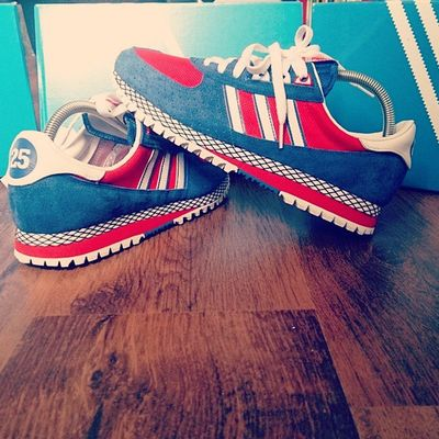 TodaysPickup Adidascitymarathon Adidasnigo Adidasoriginals25thanniversary Thebrandwiththethreestripes Adi_gallery Adidas_gallery Yesadidas Trefoilonmyfeet Thethreestripes